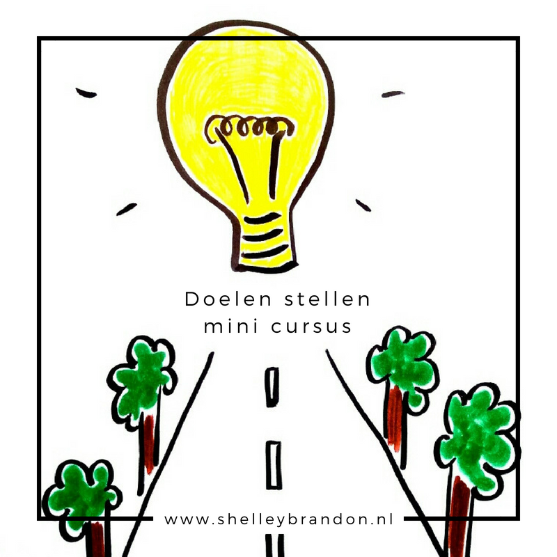 Doelen stellen mini cursus Shelley Brandon Coaching